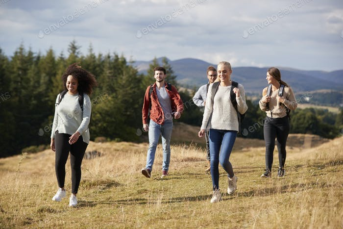 Multi ethnic group of five happy young adult friends walking on a rural path