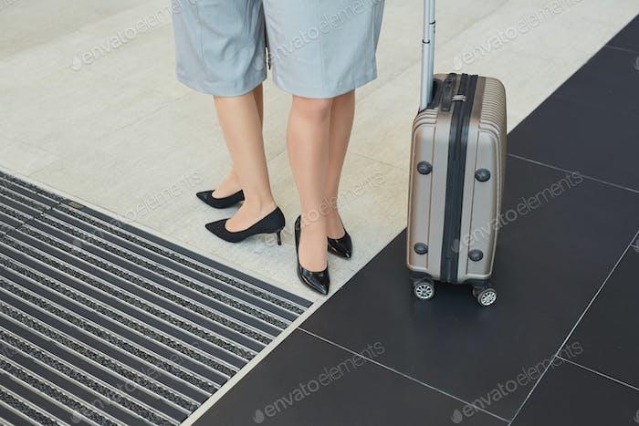 Concept of Elegant Flight Attendants Traveling
