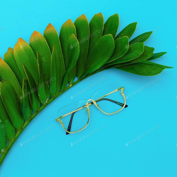 Fashion Glasses. Stylish Eyewear accessory. Flat lay Minimal Sto