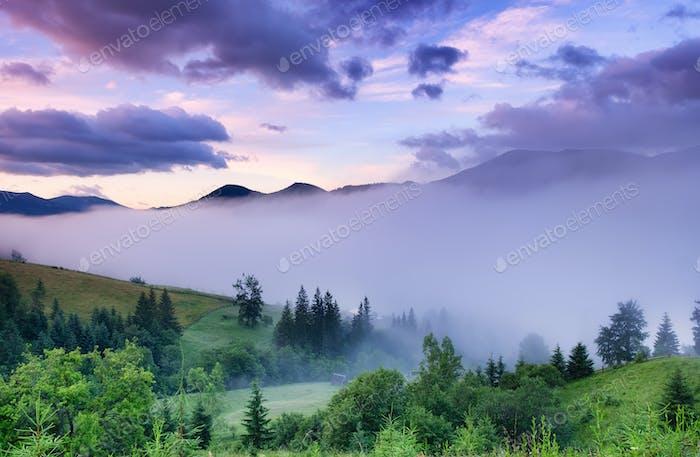 Misty landscape in the mountains. Summer landscape