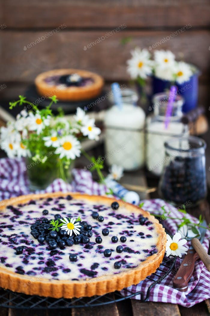 Fresh homemade creamy blueberry tart (open pie) on rustic backgr