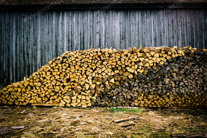 A Wood Pile of Different Shades