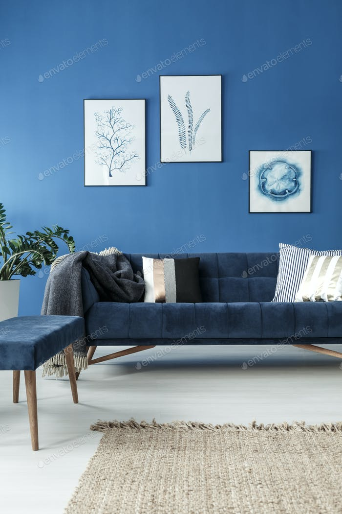 Sofa in blue room
