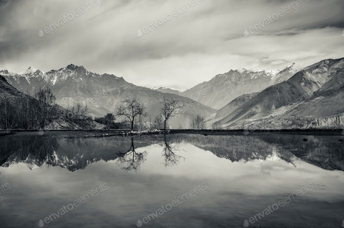 Trees and mountains reflection in still lake