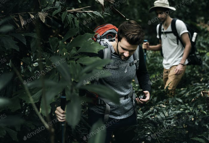Trekking in a forest