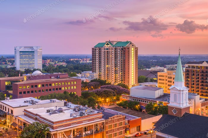 Tallahassee, Florida, USA Skyline