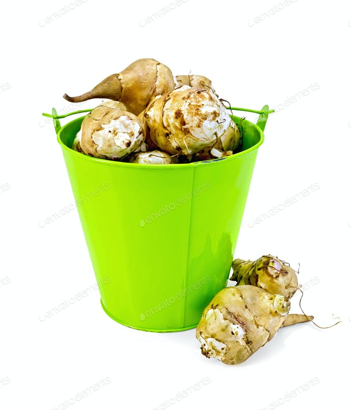 Jerusalem artichokes in a green bucket and on the table