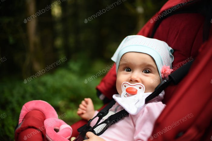 Adorable baby girl outside in red stroller in forest. Infant with soother green background