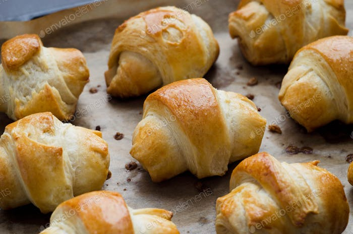 Baked mini croissants with cheese