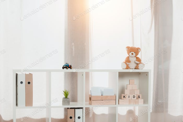 wooden bookshelf with arranged folders and toys