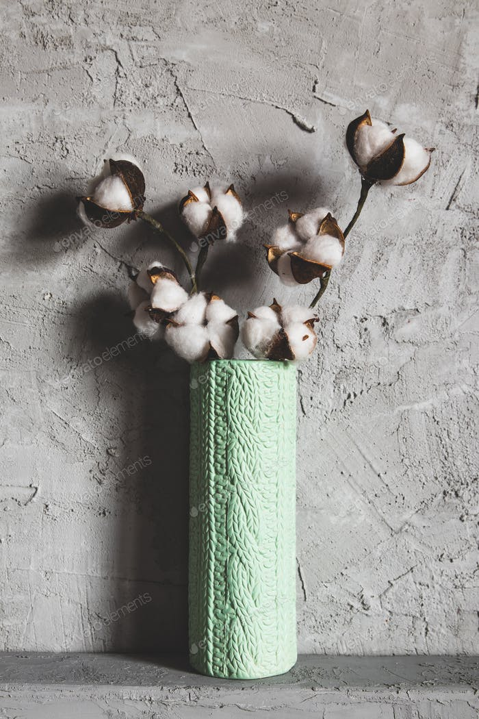 branches of cotton in a vase on a background