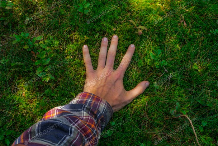 male hand touching a soft green ground moss