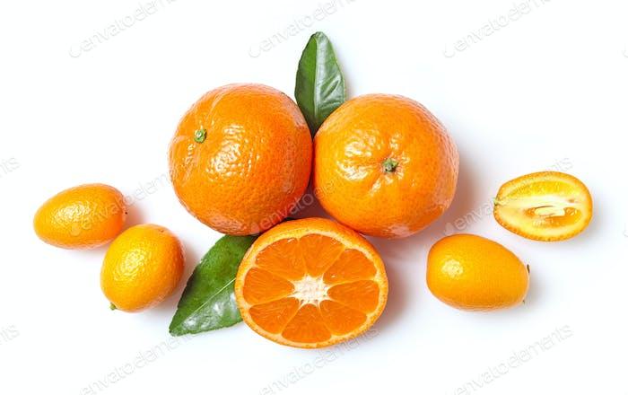 fresh clementines and kumquats