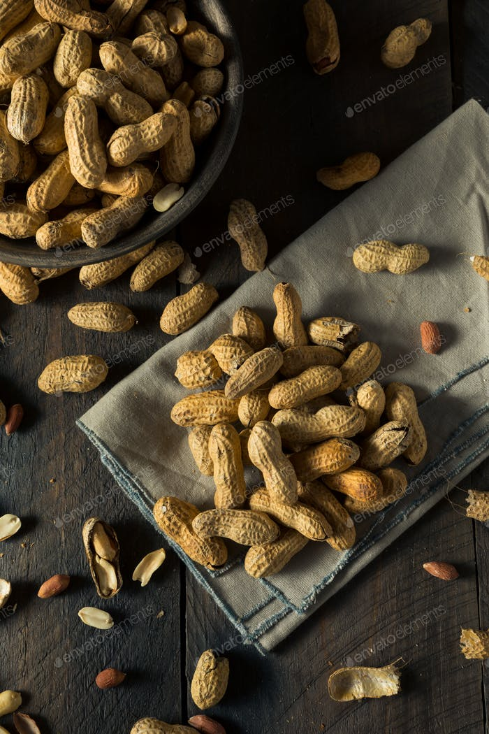 Dry Salted Roasted Shelled Peanuts