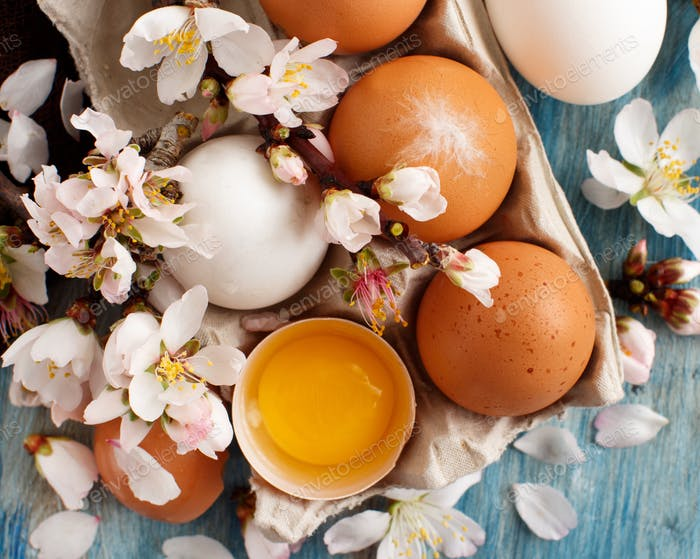 Сhicken eggs and almond flowers