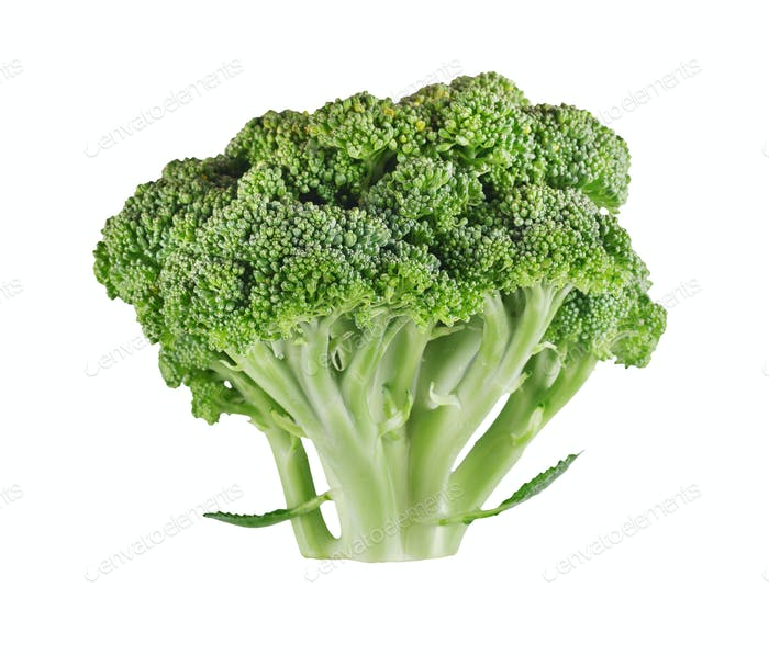 Fresh ripe broccoli tree with green leaves isolated on white