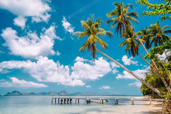 Exotic tropical beach with palm trees, jetty pier, blue sky and white clouds