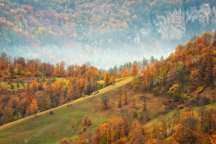 Montaña de otoño