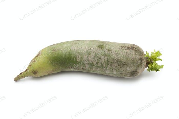 Whole single green radish