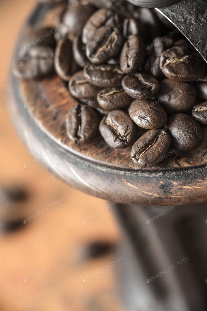 Coffee beans in the coffee mill close-up