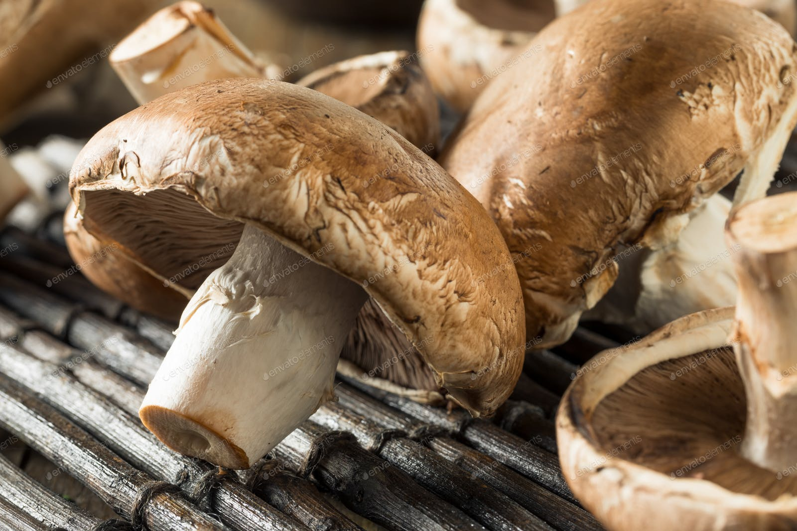 Raw Organic Portobello Mushrooms Photo By Bhofack2 On Envato Elements