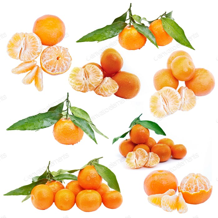 Set of mandarin