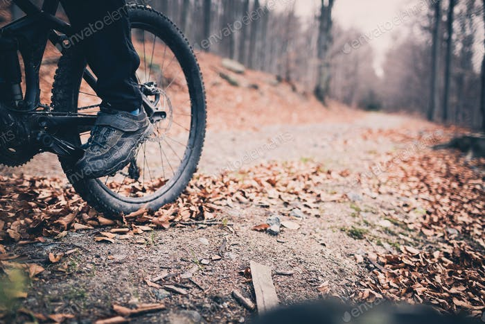 Mountain biker on cycling trail in woods