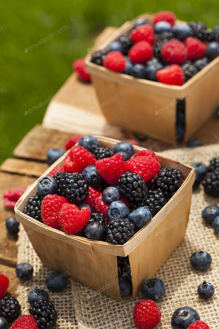 Healthy Organic Ripe Berries