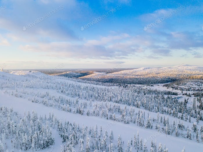 Aerial view of winter forest with frosty trees, rural road and village in Finland