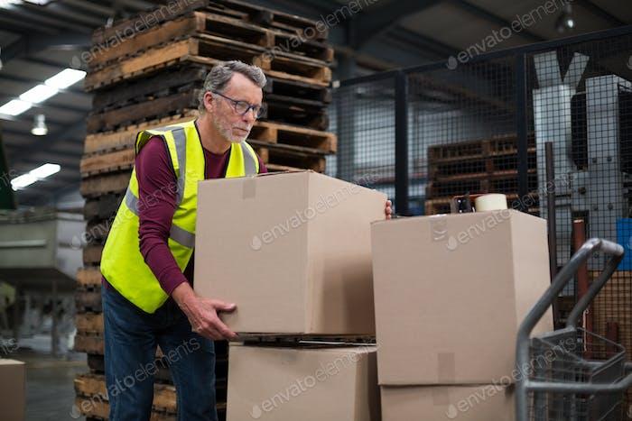 Factory worker loading cardboard boxes on trolley