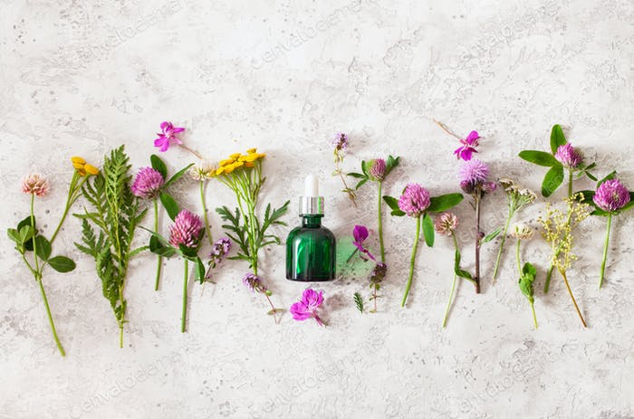bottle cosmetic skincare serum medical flowers herbs. alternativ