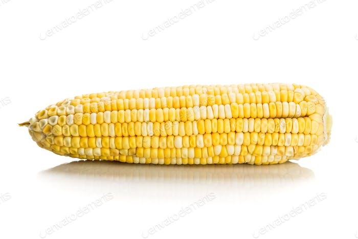 Frischer Maiskolben mit Kernkernen ohne Schale