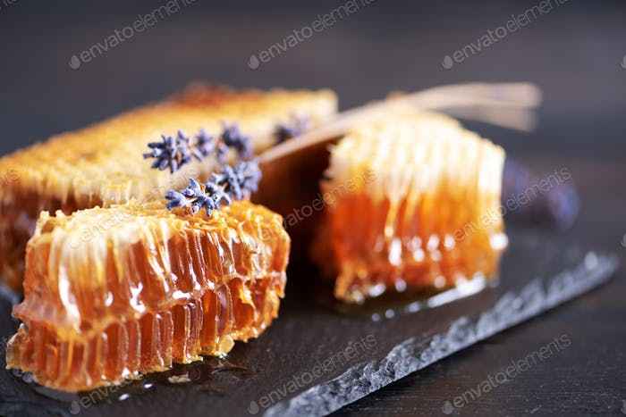 Fresh honeycombs pieces, dry lavender flowers on black background. Autumn harvest concept