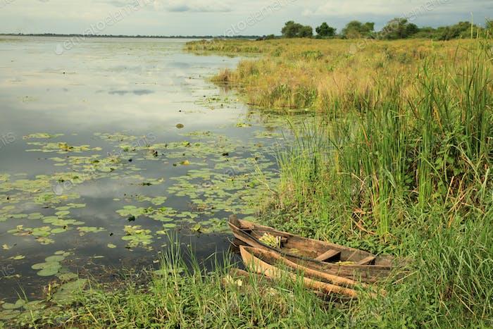 African River Setting - Agu River - Uganda, Africa