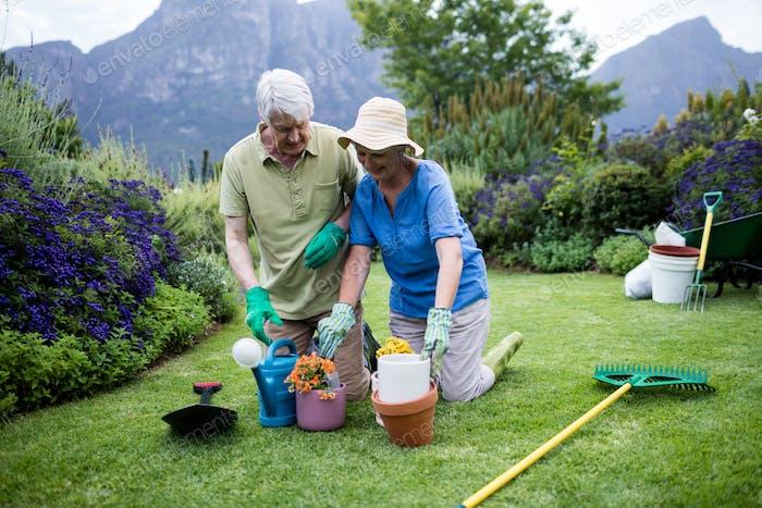 Senior couple planting flower
