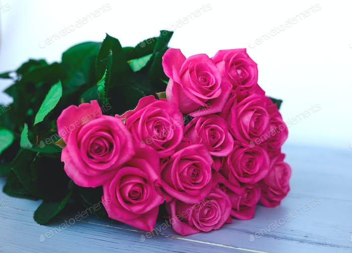 Beautiful fresh spring roses on a grey background