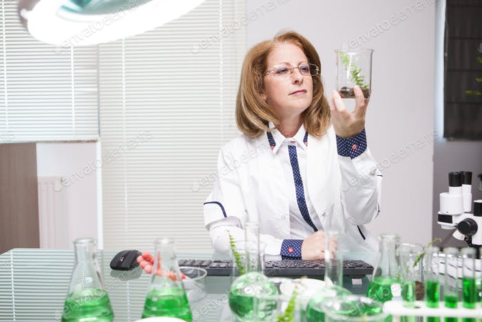 Academic scientist doing research on plants in microbiological lab