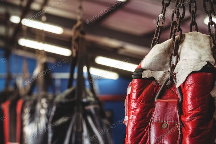 Punching bag hanging from ceiling