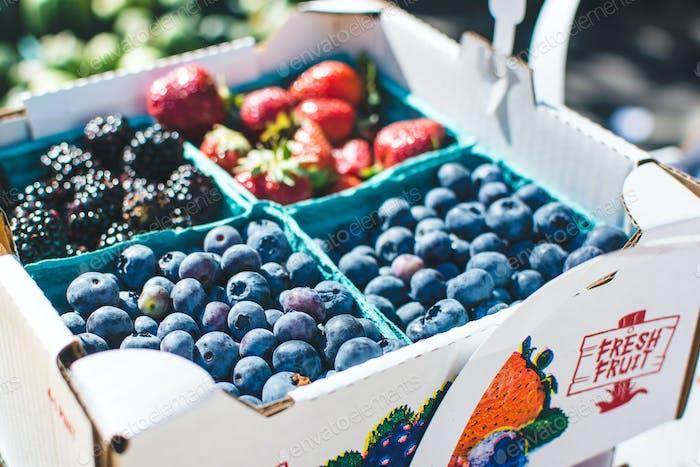Heidelbeeren und andere Beeren auf einem Bauernmarkt