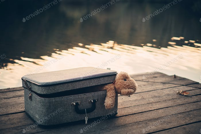 Teddy bear in old bag