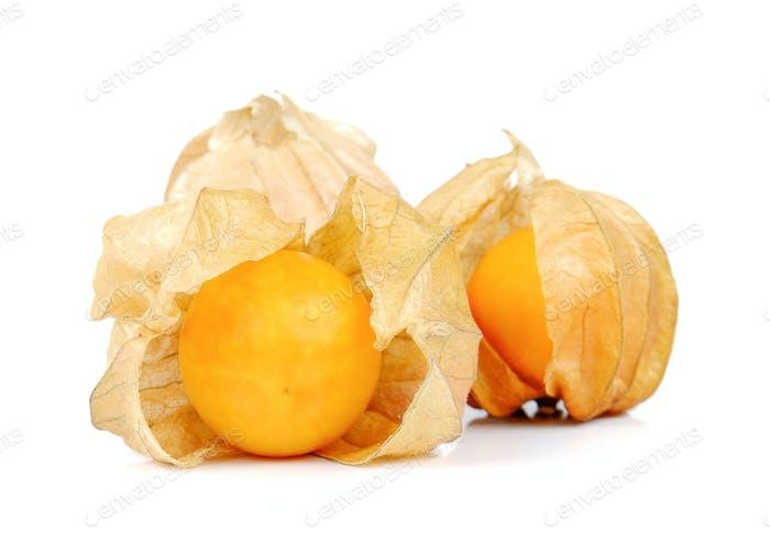 Physalis fruits isolated on white background.