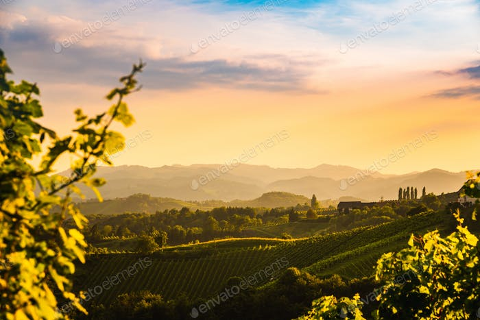 View from famous wine street in south styria, Austria at tuscany like vineyard hills