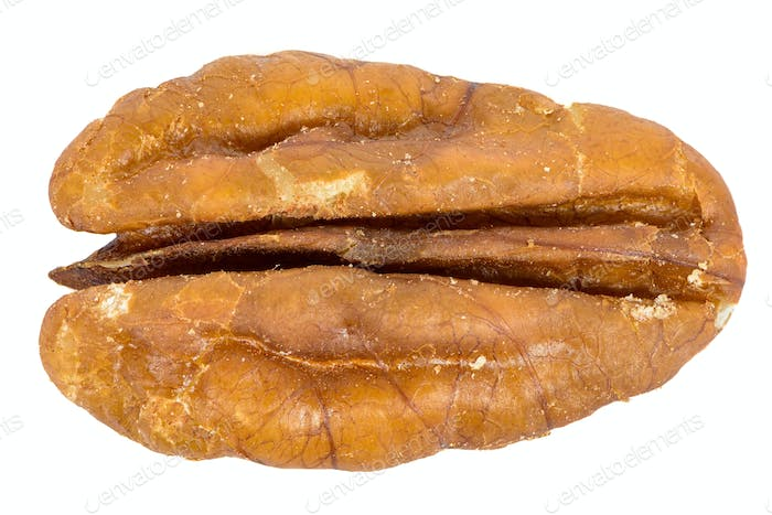 Close-up of pecan nut isolated on white background