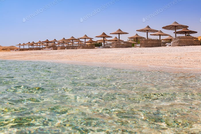 The beach with clear water in Egypt. Coast of the Red Sea. Summer holiday