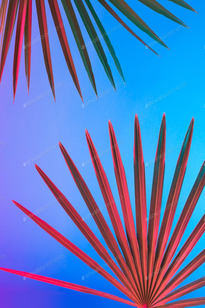 Tropical and palm leaves in vibrant bold gradient holographic neon colors. Concept art.