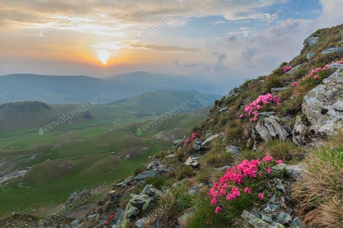 Montañas Parang, Rumanía