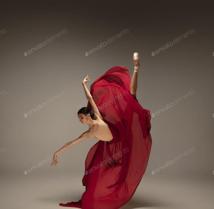 Young graceful tender ballerina on grey studio background