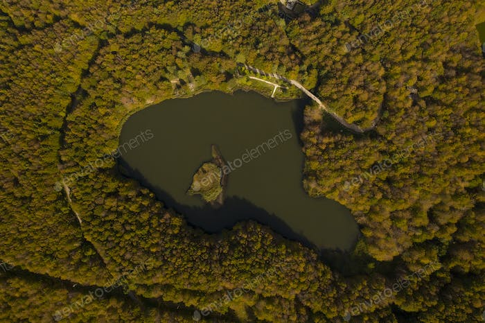 mountain lake in a beech forest photographed from the sky with drone