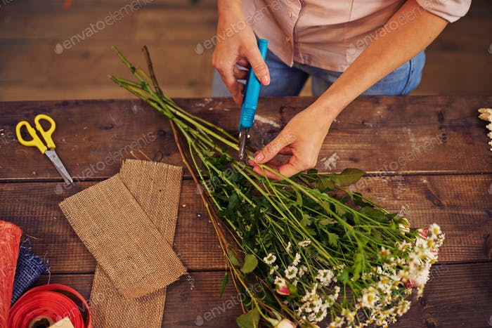 Shortening floral stems