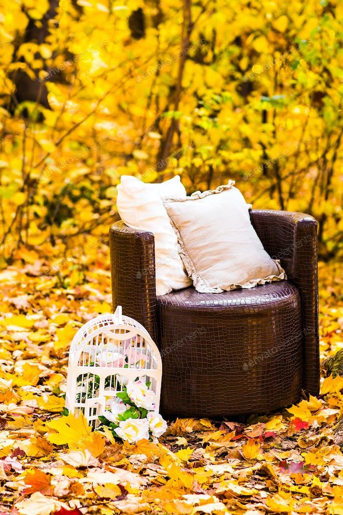 old  brown garden chair in autumn leaves